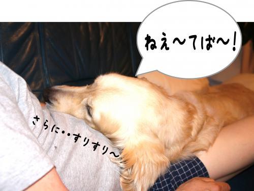 2_convert_20110918215638.jpg