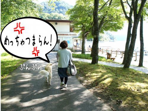 2_convert_20110927081805.jpg