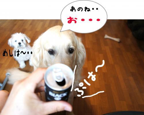 3_convert_20110815224527.jpg