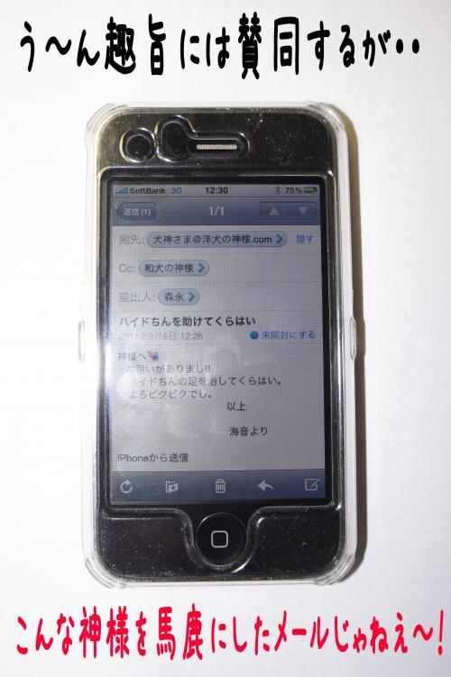 3_convert_20110908203522.jpg