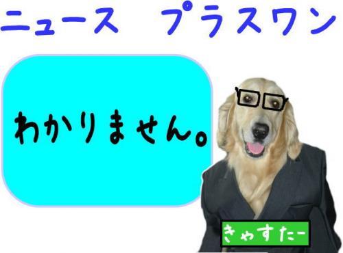 3_convert_20110924105613.jpg