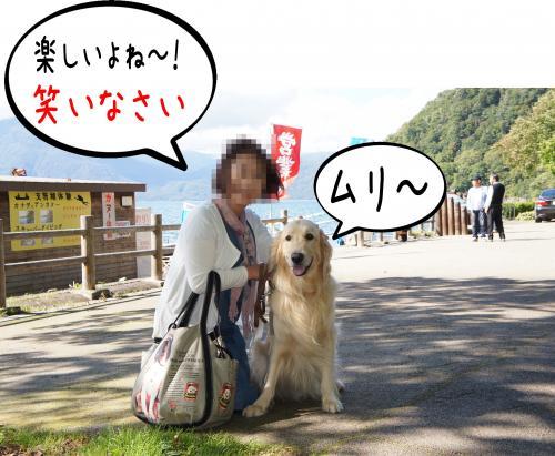 3_convert_20110927081904.jpg