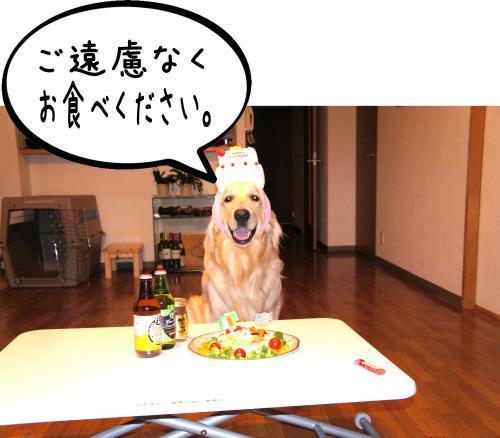4_convert_20110809091345.jpg