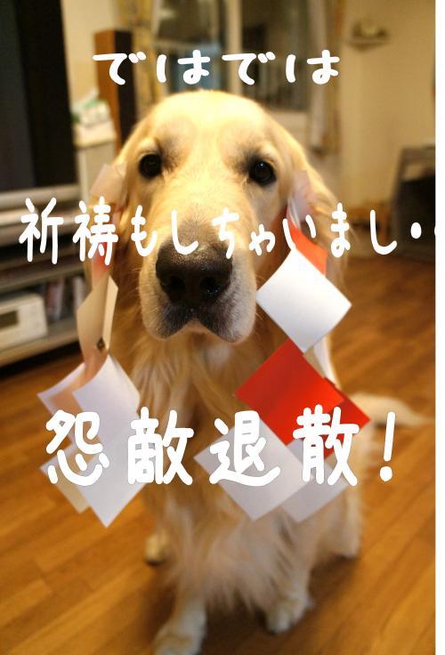 4_convert_20110908203544.jpg