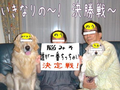 5_convert_20110415191911.jpg