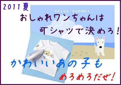 5_convert_20110726110231.jpg