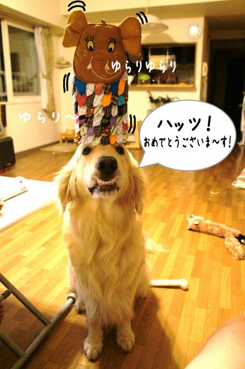 5_convert_20110910232322.jpg