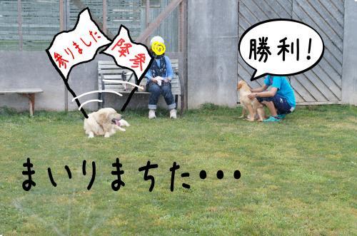 6_convert_20110808161332.jpg