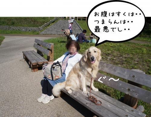 6_convert_20110927082318.jpg