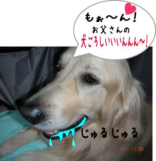 6_convert_20111117225322.jpg