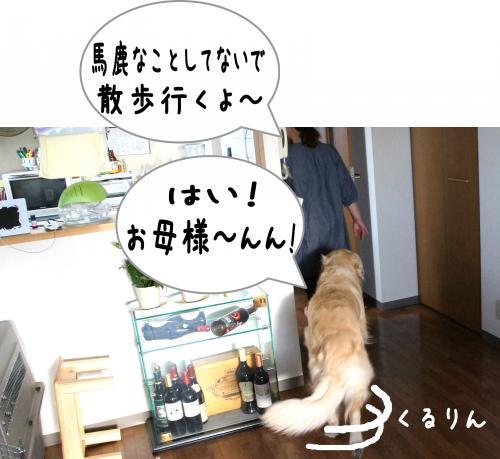 7_convert_20110815224659.jpg