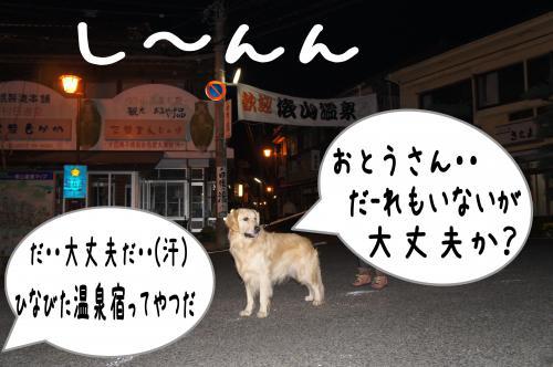 7_convert_20111117225350.jpg