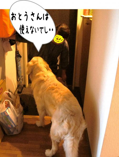 8_convert_20110815224721.jpg