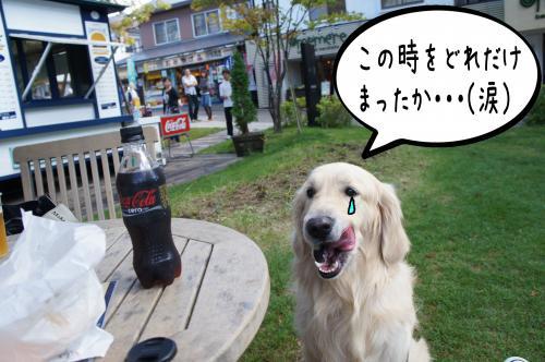 8_convert_20110927082512.jpg