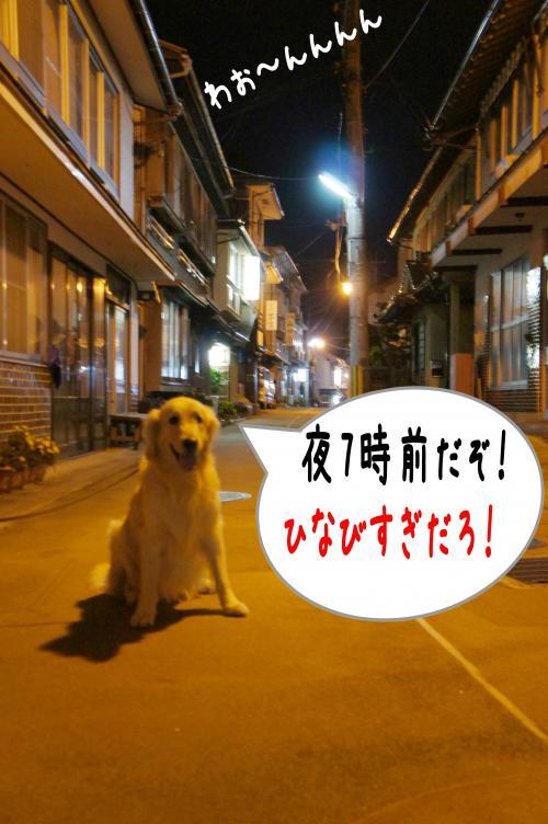 8_convert_20111117225420.jpg