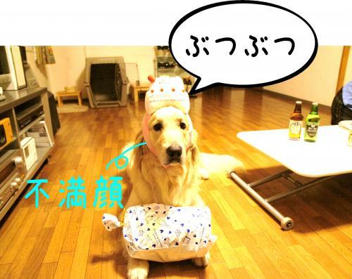 9_convert_20110809094710.jpg