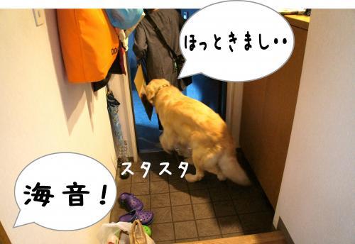 9_convert_20110815224759.jpg