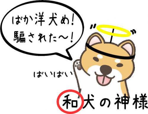 9_convert_20110823142734.jpg