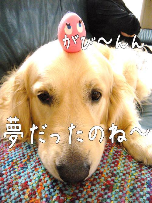 yune_convert_20110405104923.jpg