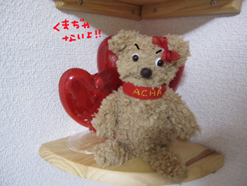 acha2_edited-2.jpg