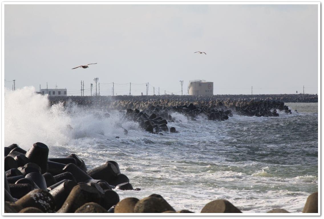 船江浜●S2013年1月11日_40