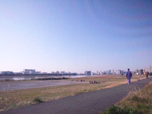 多摩川のどて1