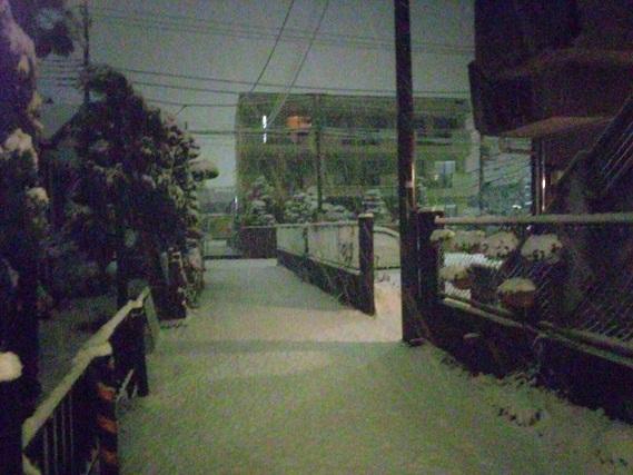 リアルな雪