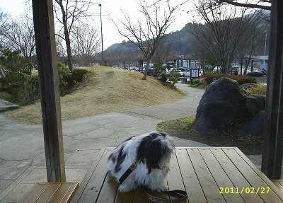 富士川サービスエリアのご案内です。