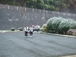1117 初雪 002