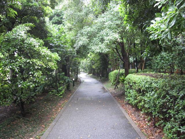 せいろかの遊歩道
