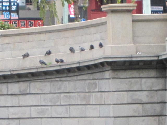 日本橋に巣食う忍の軍団