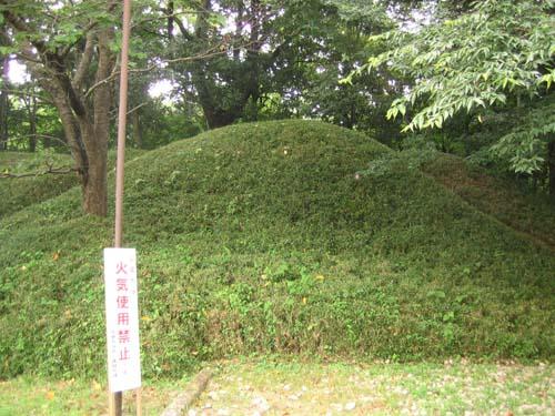 佐倉城 045
