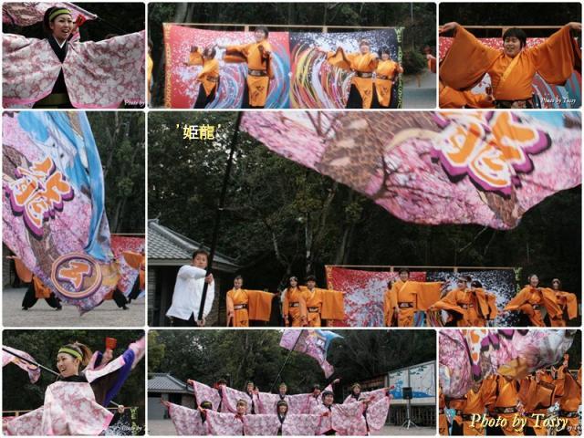 2010初踊り4 姫龍