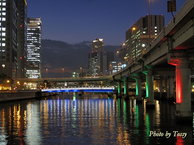 堂島川ライトアップ1