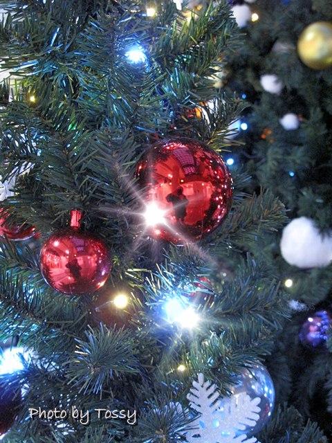 ディアモール大阪クリスマスツリー5