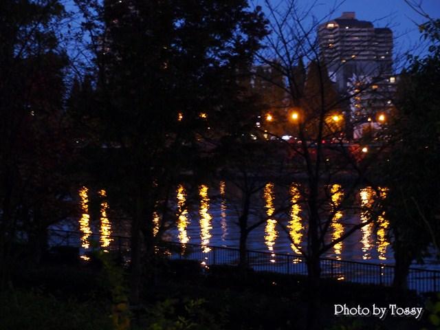 川面の灯り