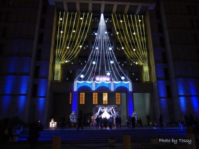大阪市庁舎 クリスマスイルミ