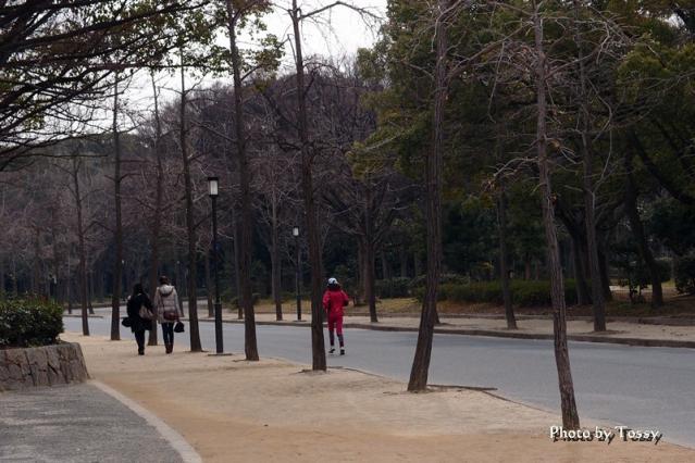 大阪城公園 ジョギング