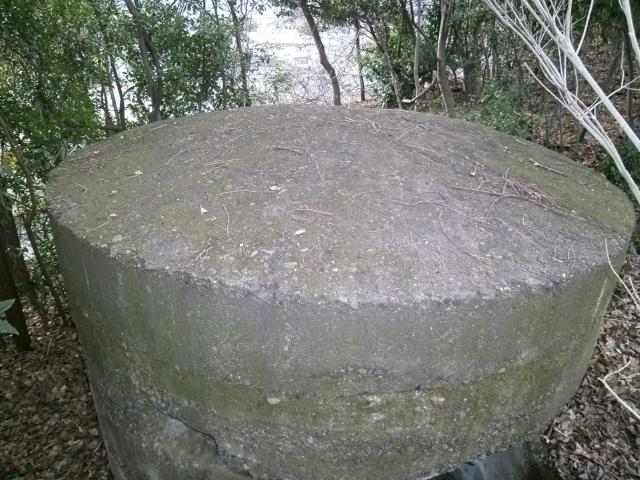 戸島神社 (5)