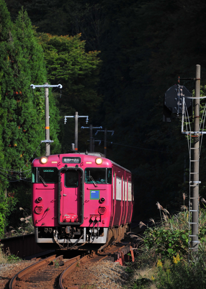 DSC_5350.jpg