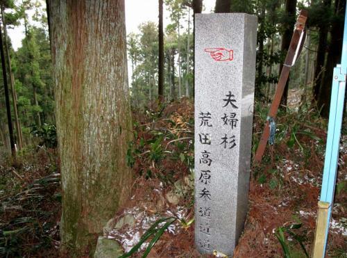 2010.1.2三郡縦走 026