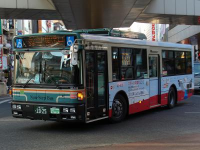 DSC08291.jpg