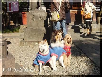 お参り三囲神社
