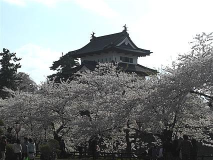 弘前公園 さくらまつり(2011年) 弘前城