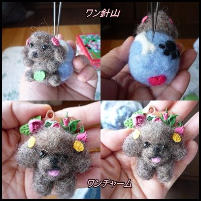 cats-youmou_seito0616.jpg