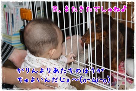 かりんブログIMG_4311