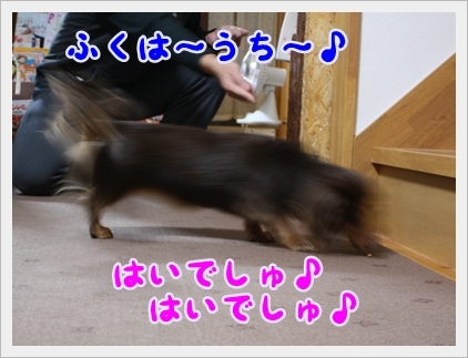 IMG5621.jpg