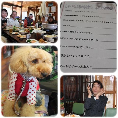 cats2_20110501223933.jpg
