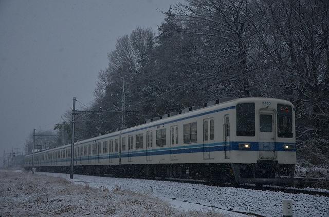 s-DSC_0682.jpg