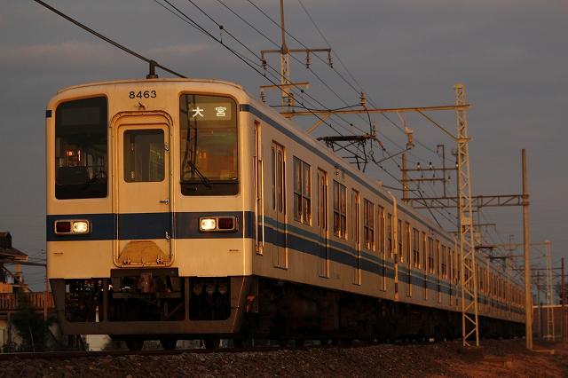 s-_MG_1064.jpg
